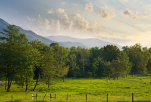 Smoky Mountain Hiking Trails in Cades Cove