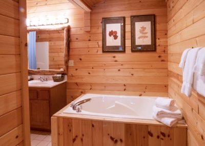 Cabins in Townsend with Whirlpool Bath