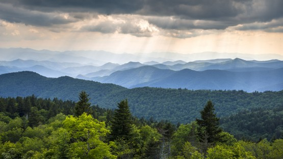 5 Summer Things To Do In The Smokies