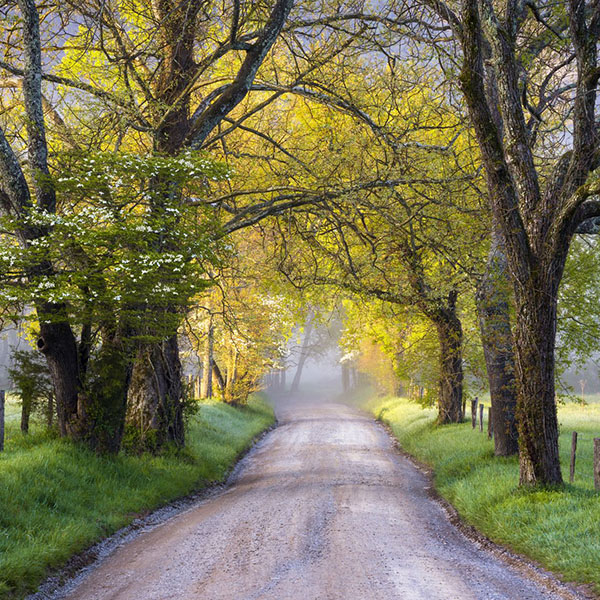 Cades Cove Tennessee Driving the Loop