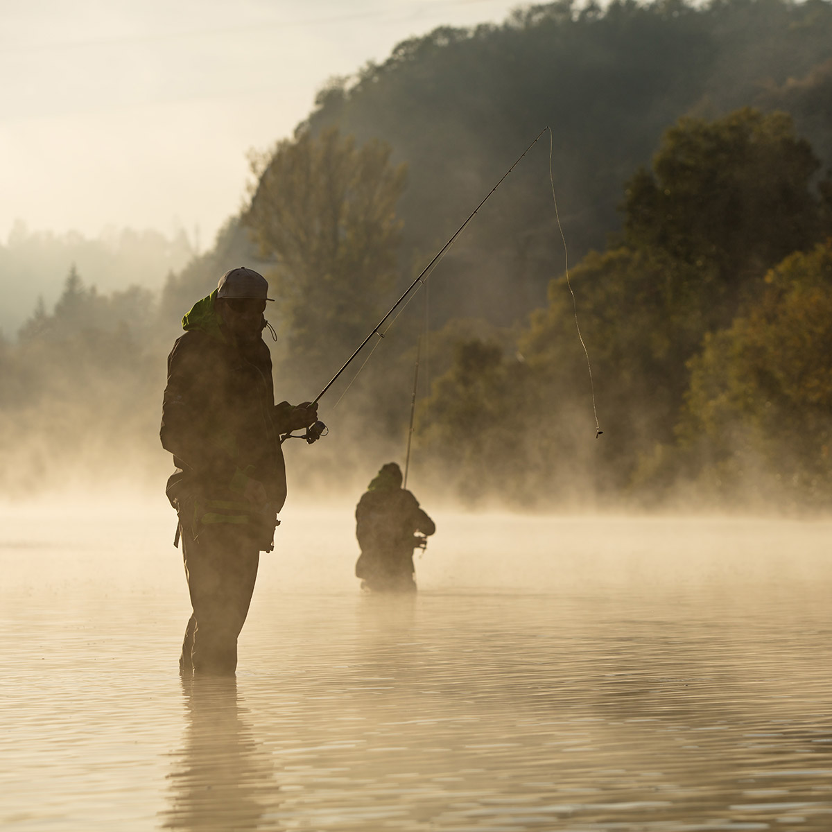 Men Fishing in the Smoky Mountains River