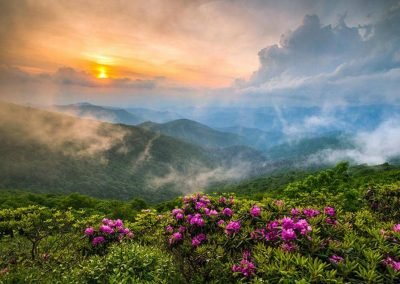 Spring Near Smoky Mountain Attractions