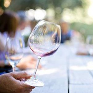 Townsend TN Wine Tasting