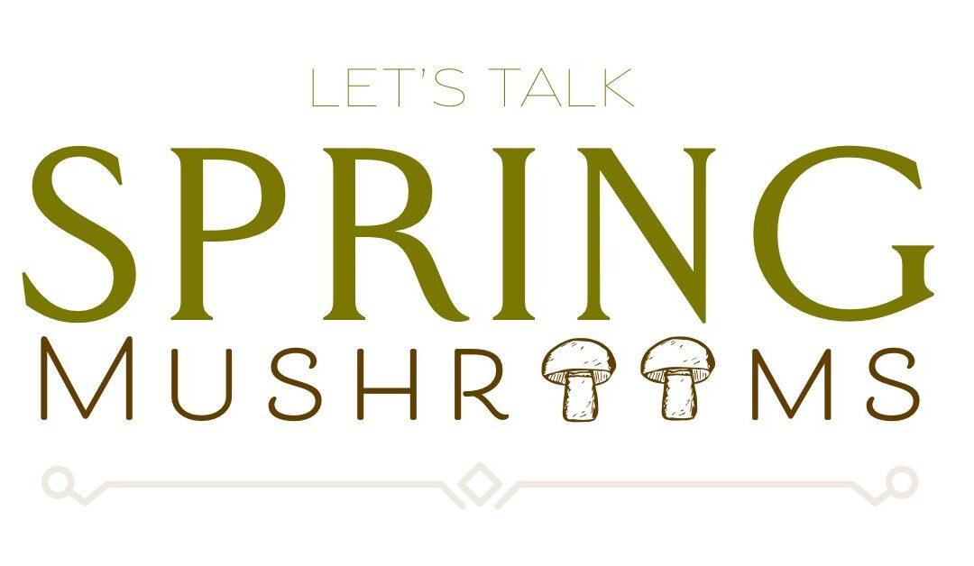 Lets Talk Spring Mushrooms