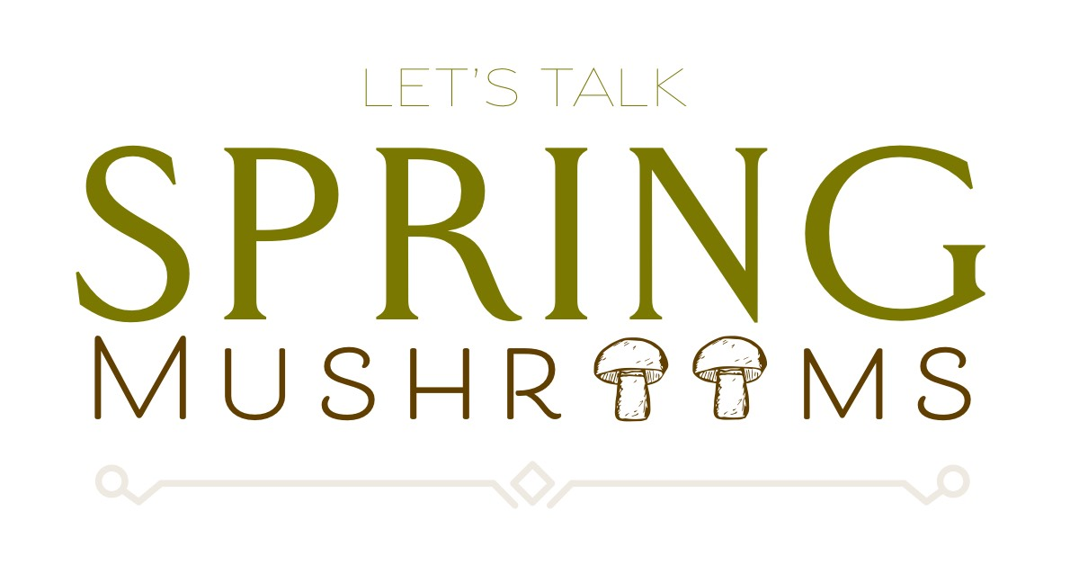 Let's Talk Spring Mushrooms