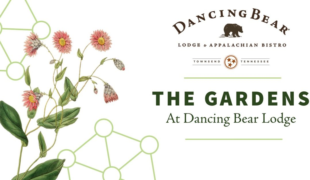 The Gardens at Dancing Bear Lodge